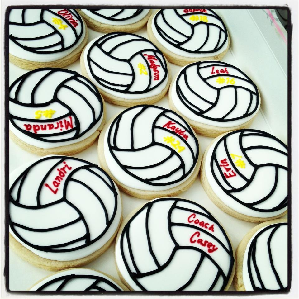 Volleyballs for the Team