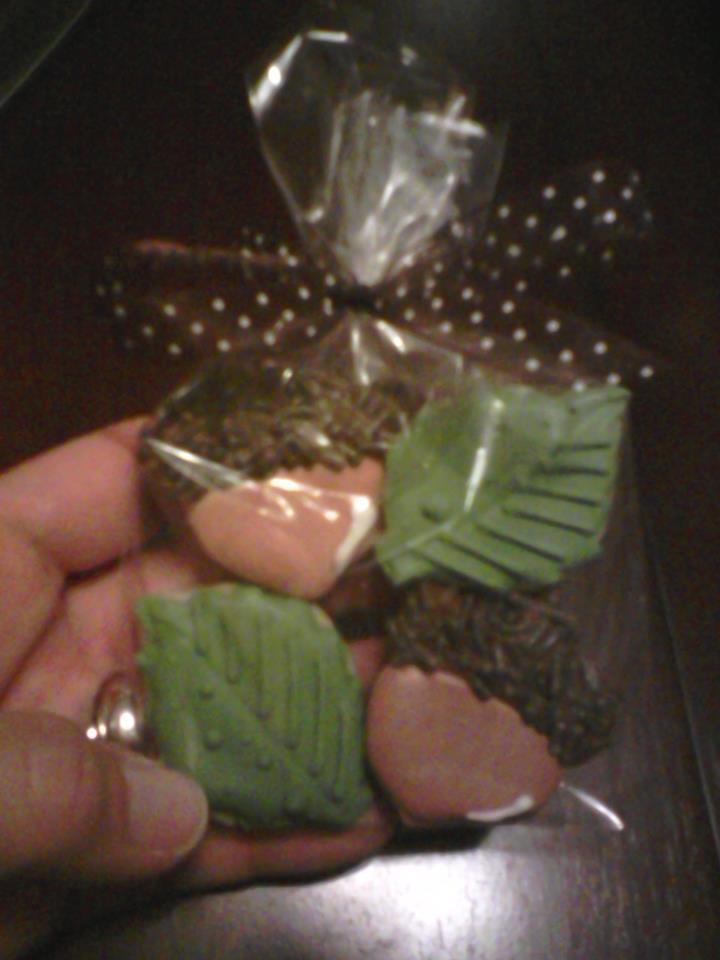 acorns leaves