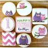 Little Owl Set