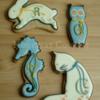 Alphabet pets