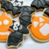 Going batty this Halloween!