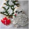 A Snowy Owl and a Pine Tree