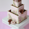 Cookie Wedding Cake Box