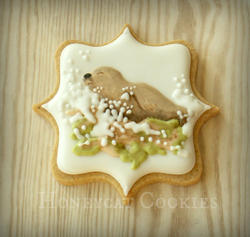 Orkney Nature Festival Cookies