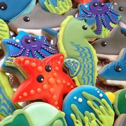 Sea Creatures close up