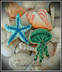 Sea Shell Nautical Cookies