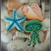 Sea Shell Nautical Cookies