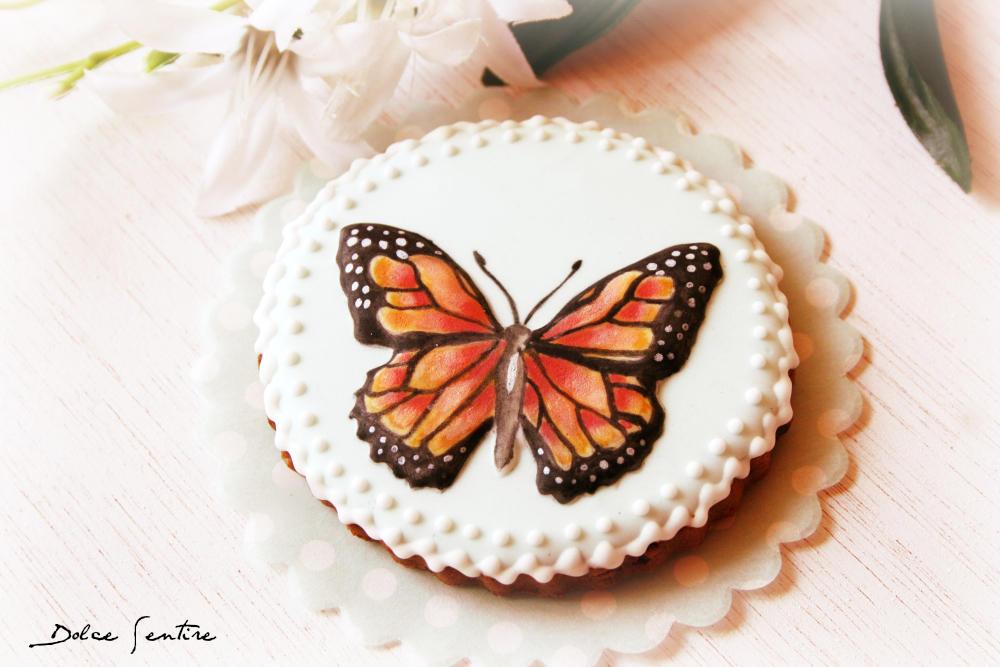 Fly like a Butterfly!