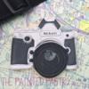 Nikon Camera Cookie
