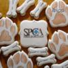 Paws, bones and SPCA logo