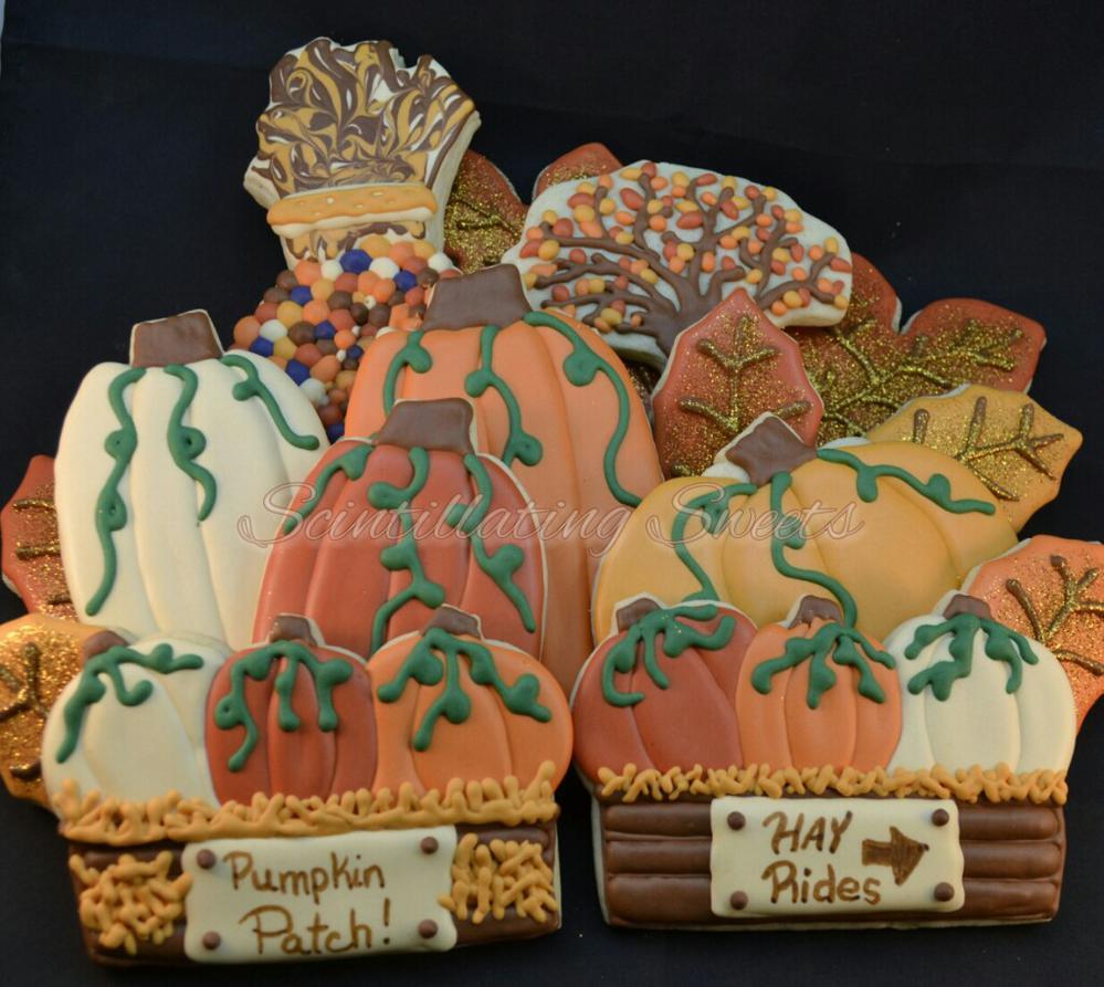 A Pumpkin Patch Wedding