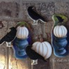 Black birds and white pumpkins