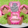Jungle Baby Shower Cookies