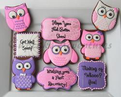 Get Well Soon Owl Cookies