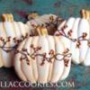 Fall pumpkins