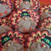 Multi-Color Turkeys