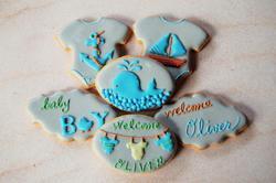 summer baby boy cookie set