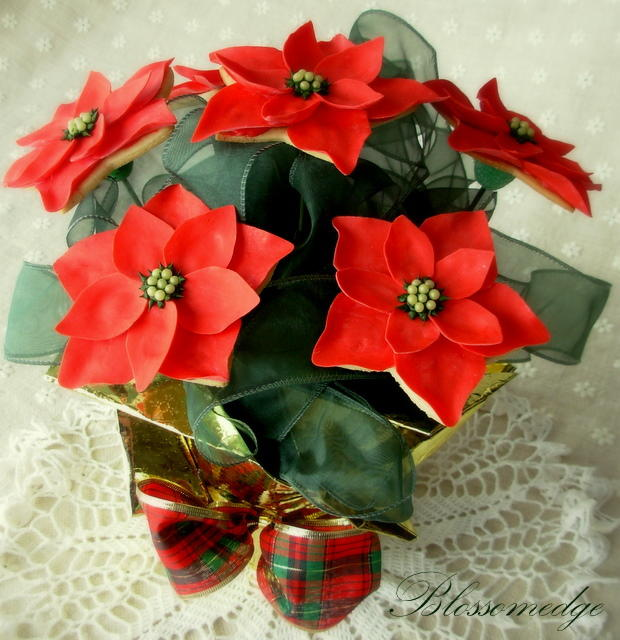 Poinsettia cookie bouquet