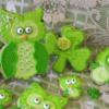 Irish Owls