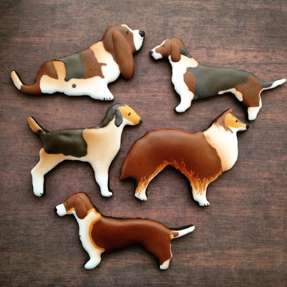 Good lil doggies