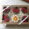 Ladybuds and flower gift box