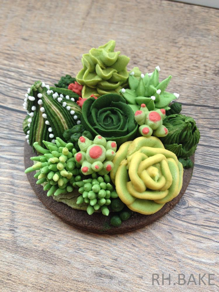 Handpiped Succulents and Cacti
