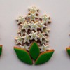 Trio of Hyacinths