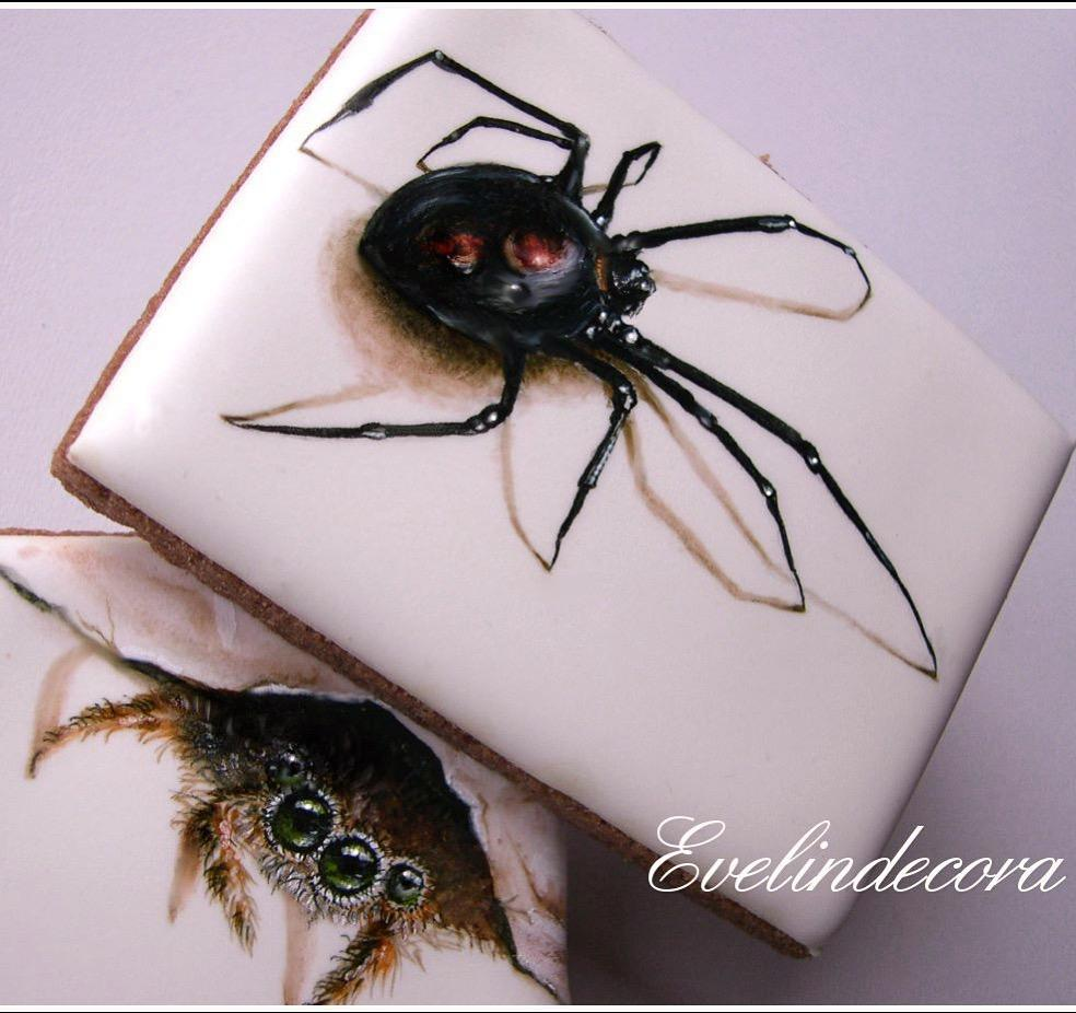 Handpainted 3-D Spider Cookies