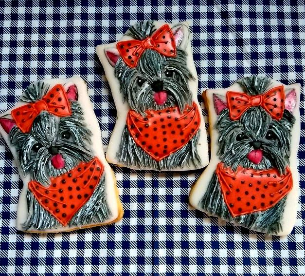 Yorkies in Halloween Colours