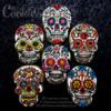 Dia De Los Muertos / The Day of The Dead