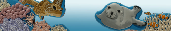 banner of under the sea