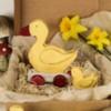 Wooden Duck Toy Cookies