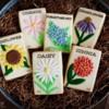 Seed Packet Cookies