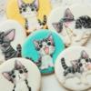 Chi's cat cookies