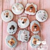 The Secret Life Of Pets Cookies