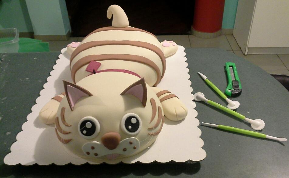 There is a cat in my cake!