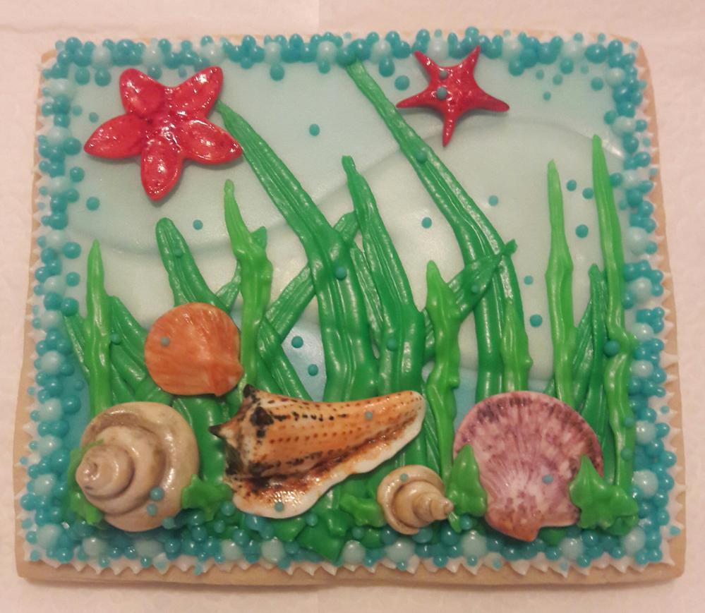 Seashell Cookies 2