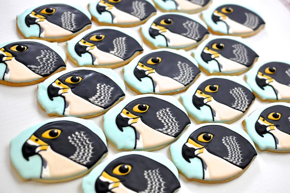 Falcon Cookies