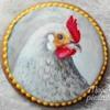 Portrait of a chicken :)