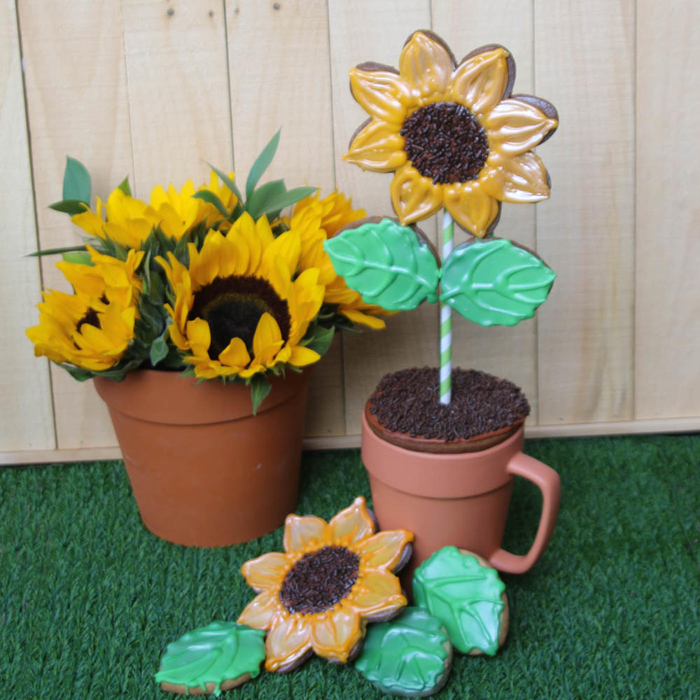 Sunflower Flower Pot Mug Cookie Lee Shepherd Gingerhaus