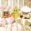 3-D Easter Box Cookies