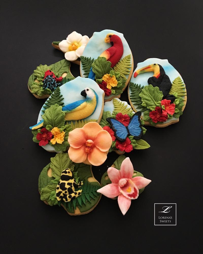 Biodiversity. Costa Rican Cookies. By Lorena Rodríguez.