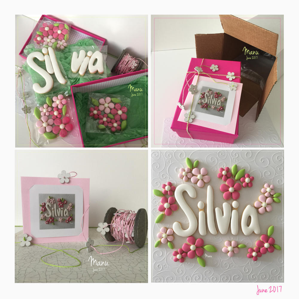 Cookies for Silvia | Manu