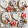Toucan Cookies
