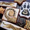 Cheetah Detail