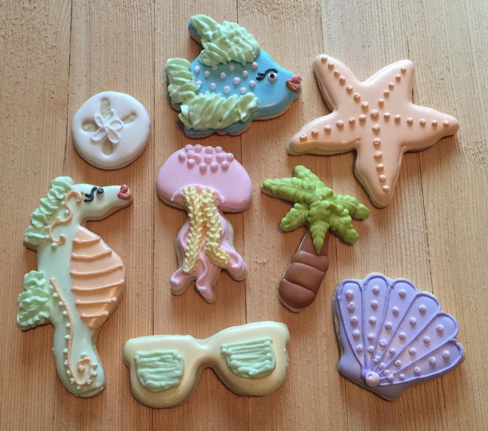 Seahorse, jellyfish, starfish, shell