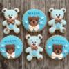 Blue Teddy Bears