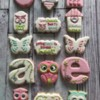 OwlBack to school cookies