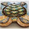 turtle_front_view_wm_xkl_sonja_galmad