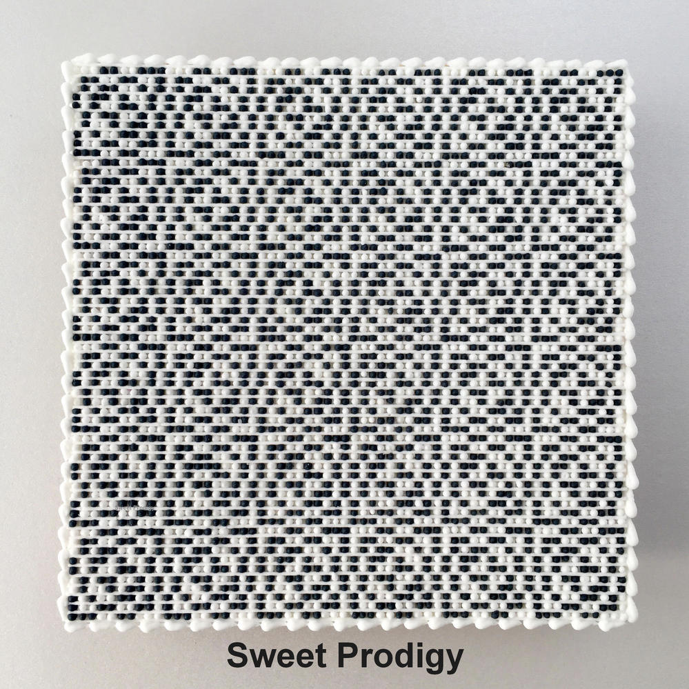 Black and White No. 1 - Sweet Prodigy